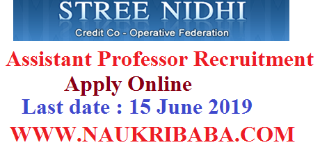 STREE NIDHI ASSISTANT MANAGER vacancy 2019 apply soon
