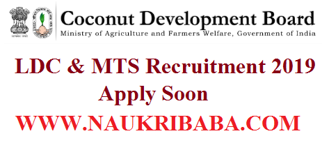 LDC & MTS RECRUITMENT VACANCY 2019